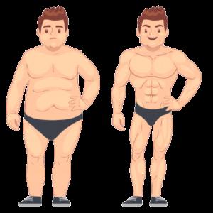 Fat to fit weightloss program