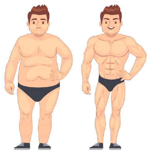 fat to fit weight loss